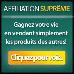Affiliation Suprême-Un Secret Pour Capter l'Intérêt De Vos Lecteurs